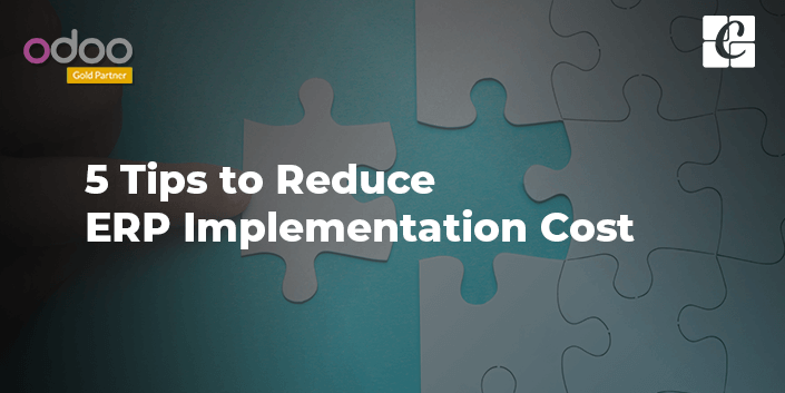 5-tips-to-reduce-erp-implementation-cost.png
