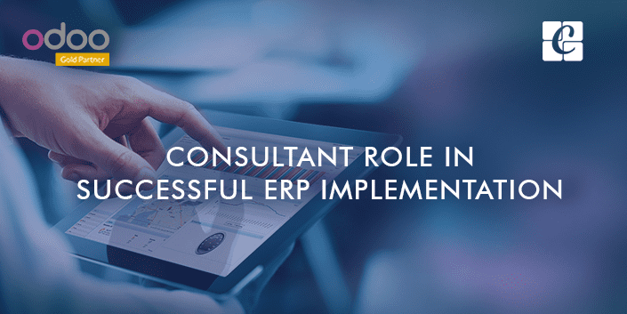 consultant-role-in-successful-erp-implementation.png