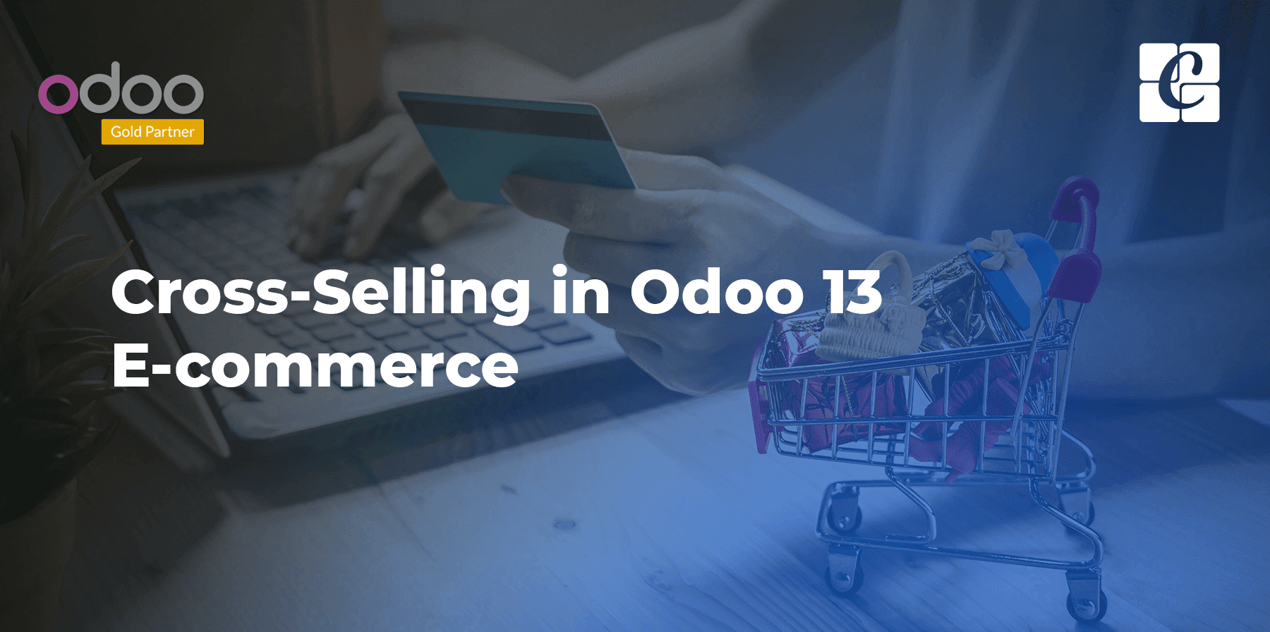 cross-selling-in-odoo-13-ecommerce.png
