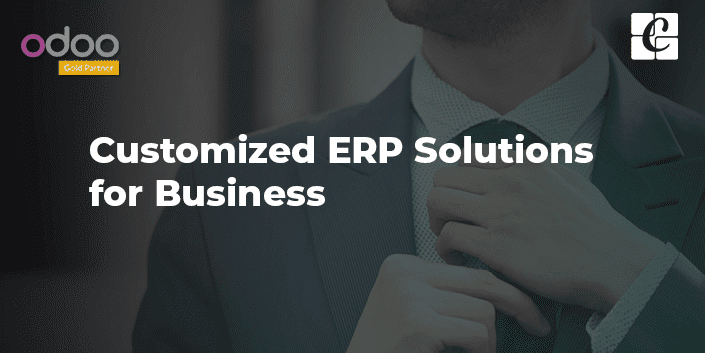 customized-erp-solutions-for-business.png