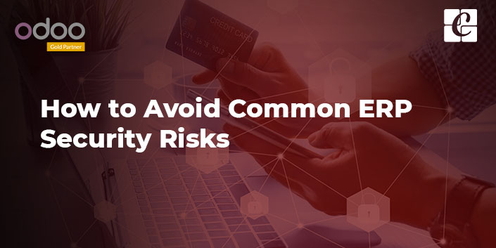 how-to-avoid-common-erp-security-risks.jpg