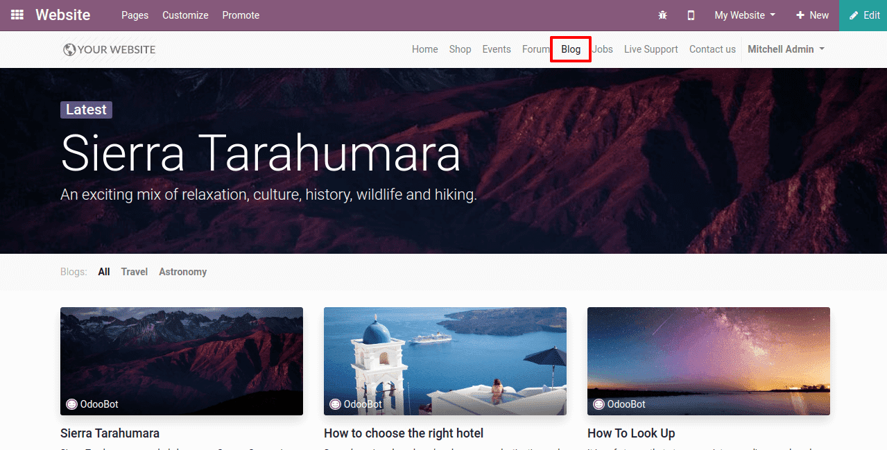 how-to-create-blog-in-odoo-13