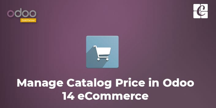 how-to-manage-catalog-price-in-odoo-14-ecommerce.jpg