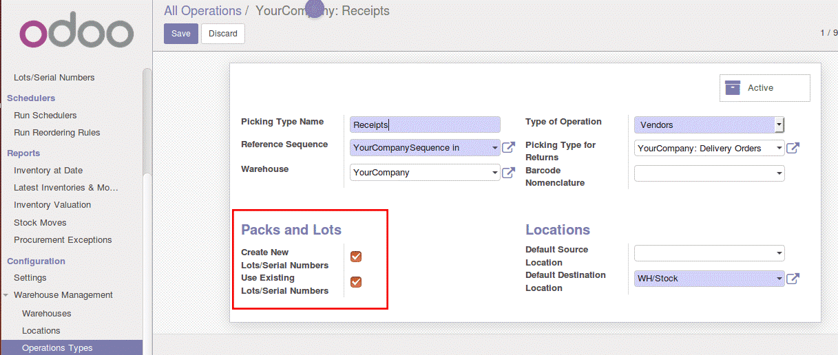 how-to-manage-lots-in-odoo-3-cybrosys