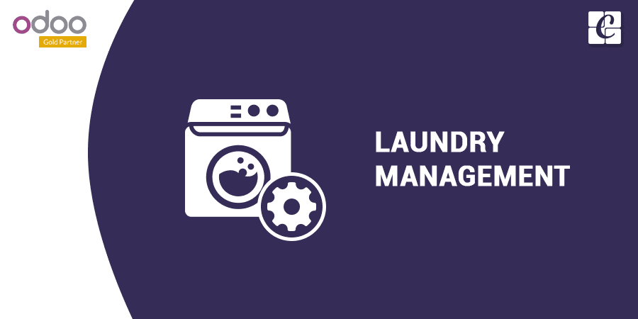 laundry-service-management.png