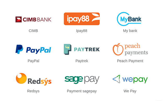 payment acquirers in odoo 13 cybrosys
