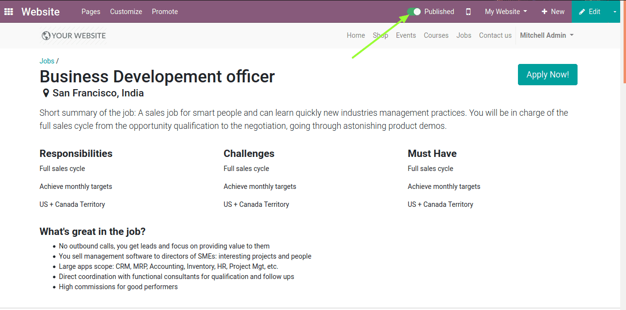 publish-job-vacancies-odoo-13-cybrosys