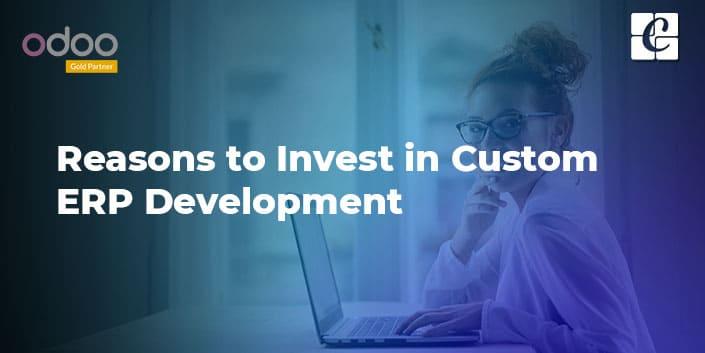 reasons-to-invest-in-custom-erp-development.jpg