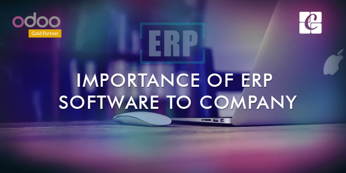 what-is-the-importance-of-erp-for-business-organizations.png