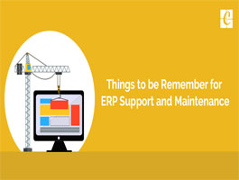 Things to be remember for ERP Support and Maintenance