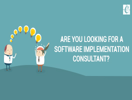 Are you looking for a Software Implementation Consultant