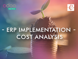 ERP Implementation Cost Analysis