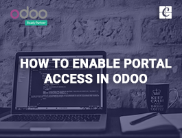 How to enable portal access in odoo?