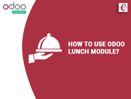 How to use Odoo Lunch Module?
