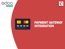 Payment gateway integration in odoo