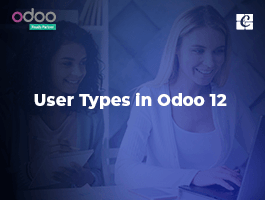 User Types in Odoo 12