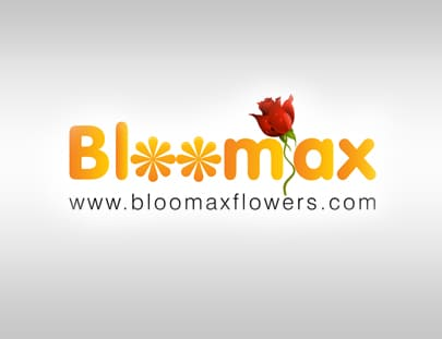 Cybrosys Bloomax Accounts ERP